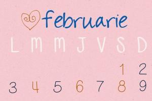 oferta lunii februarie