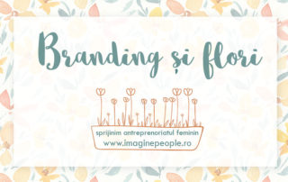 oferta servicii de branding si identitate vizuala pentru antreprenoriat start-up